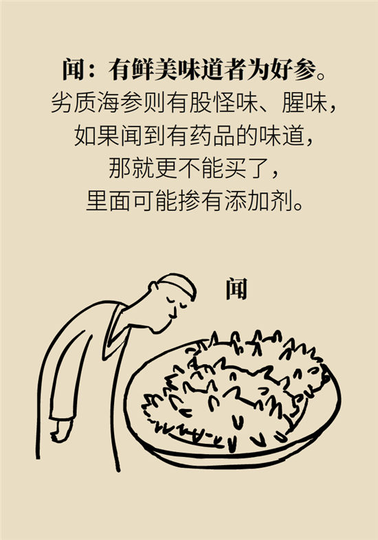 绝大多数海参不能吃,这些知识点你可能是空白